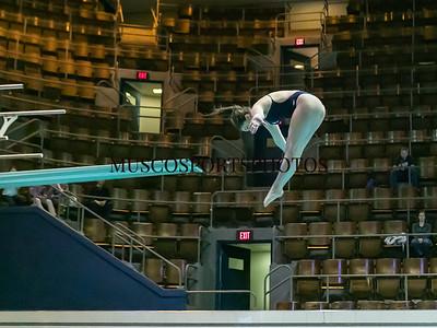 Swimming-diving vs Seton Hall_523