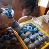 Grade 8 TLE: Baking Cupcakes