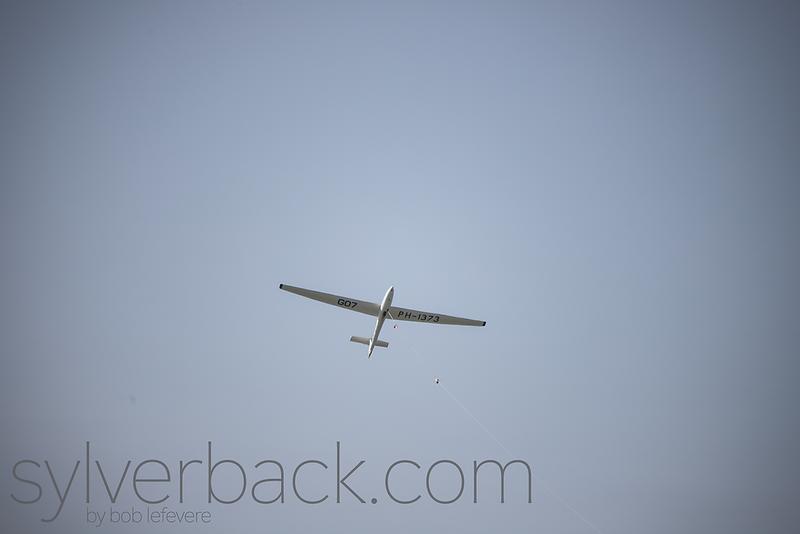 Allstar PZL SZD-51-1