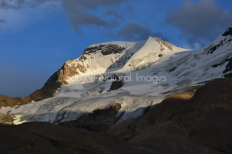 Golden Hour at Mount Athabasca