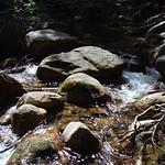 Sabbaday Falls Loop 21