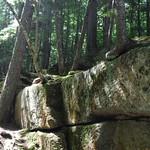 Sabbaday Falls Loop 17