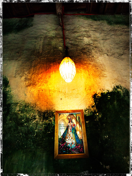 43-Our Lady of the Flowers, pray for us