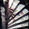 65-Spiral Brick Steps