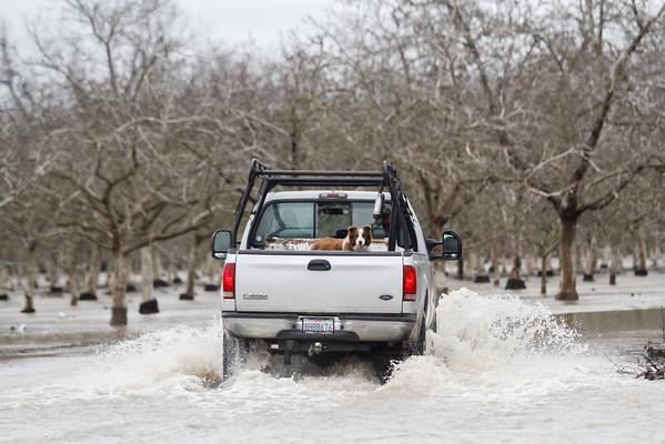 Sacramento River floods Scotty's and River Road
