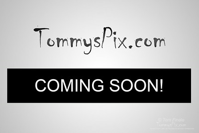 Fox Hunt 8/ 1-2 /2014