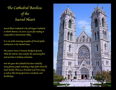 The Beautiful Cathederal Basilica of the Sacred Heart