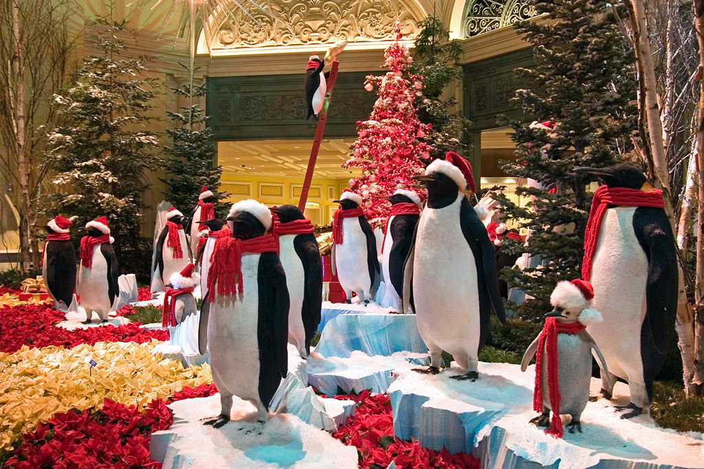 Holiday Tux<br /> by Bill Gerrard