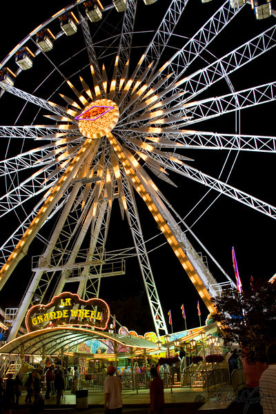 Ferris Wheel<br /> by Felicia Birney - lvcaiques