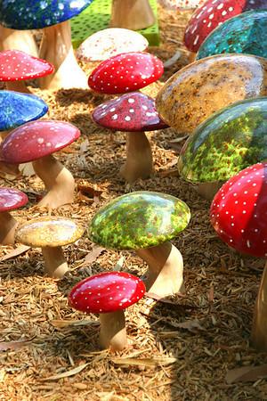 Mushrooms<br /> by Rona Hawkins