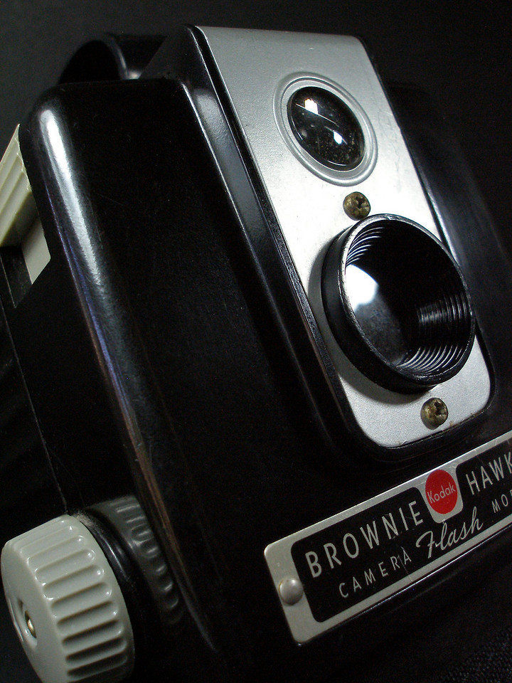 """Brownie<br /> By Vivian Frerichs<br /> <br /> Note: Taken in """"macro mode"""" and two """"daylight white"""" lights."""