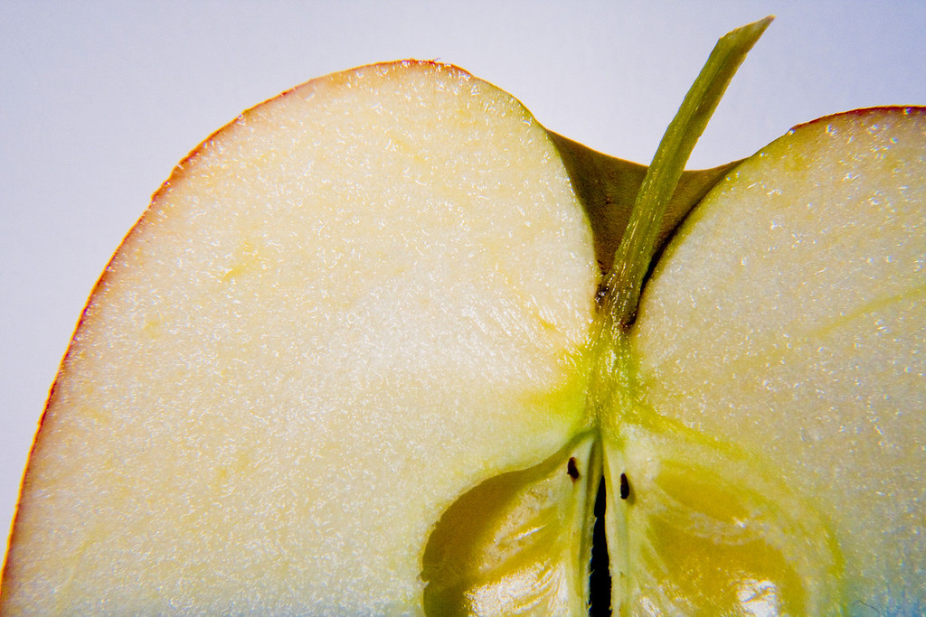 Apple Slice<br /> By Vivian Frerichs (vivpix)<br /> <br /> Apple slice stem and core in macro