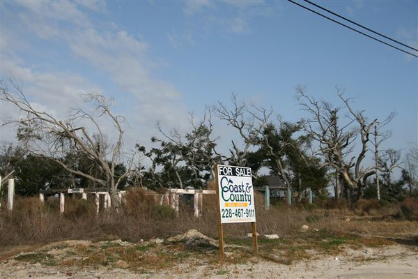 New Beginning #1<br /> By Toni Hayes<br /> Along the Mississippi Gulf Coast, miles of homes were destroyed by Katrina.<br /> I hope this photo conveys a semblance of hope or a new beginning.