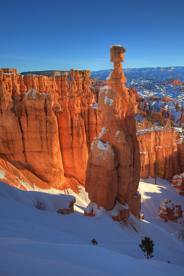 Thor's Hammer at Sunrise, Bryce Canyon National Park, Utah<br /> By Bill Gerrard<br /> <br /> Photographed at sunrise, January 2, 2009, Bryce Canyon National Park