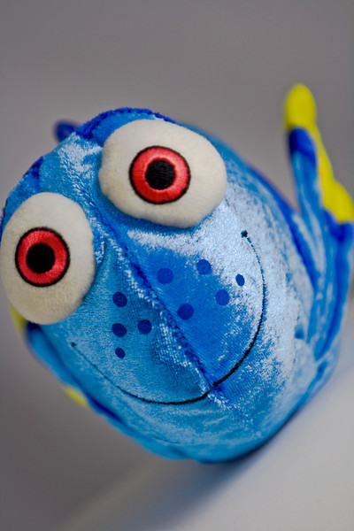 "Dory's Portrait<br /> by Vivian Frerichs<br /> <br /> Comments:<br /> ""Finding Nemo"" is a fun movie with a happy ending.<br /> This is a favorite character of mine from the movie because he (she??) is joyful all the time.<br /> Shot inside a lighting tent with one light and one silver reflector."