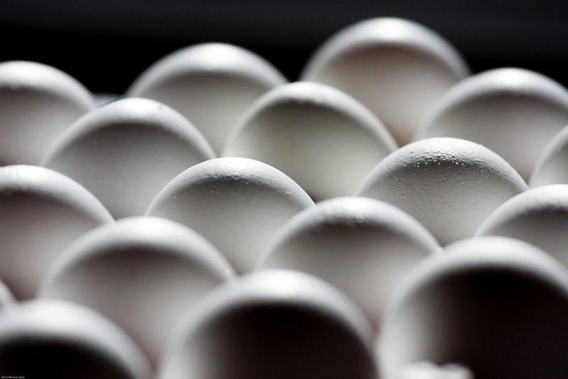 Eggs<br /> By Anna Jison<br /> Narrow DOF