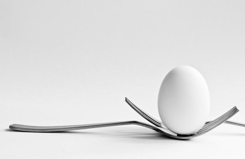 Egg<br /> By Thomas Bui