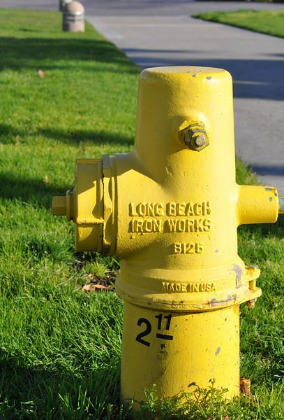 Laguna Beach Fire Hydrant<br /> By Kirsten Foos