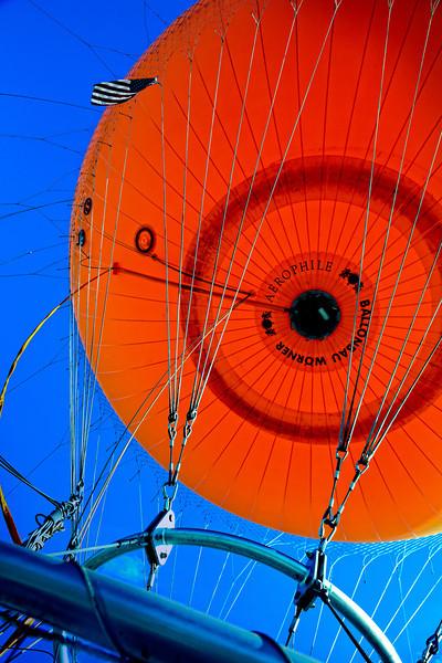 """Orange Orb"" <br /> by Vivian Frerichs"