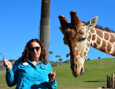Safari Park -6847