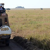 Lion and Safari Vehicle - Serengeti