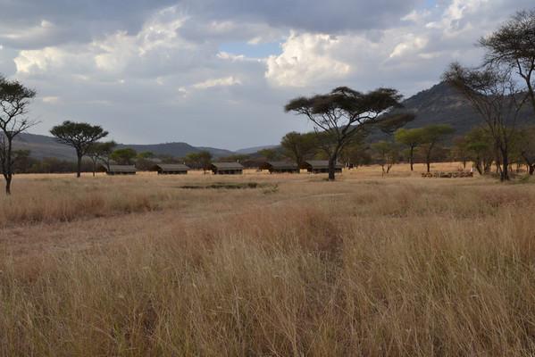 Safari - Landscapes