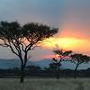 Sunset - Serengeti