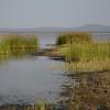 Lake Burunge shoreline - Lake Burunge Tented Camp