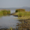 Lake Burunge shoreline - Lake Burunge Tented Camp