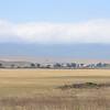 Ngorongoro Caldera landscape - Ngorongoro