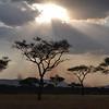 Late afternoon sky - Serengeti