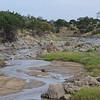 Tarangire landscape - Tarangire