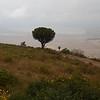 View into Ngorongoro Caldera