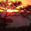 Sunset - Serengeti