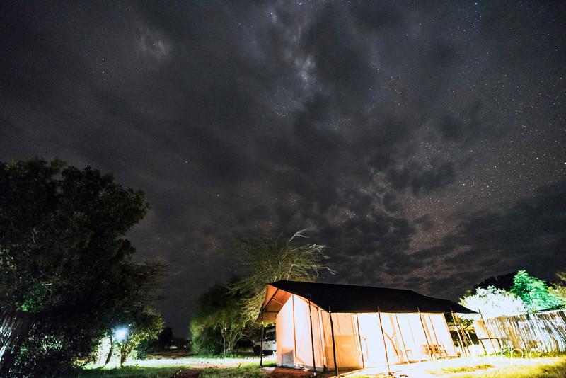 Lion Camp Sky