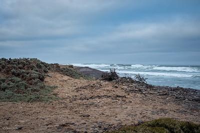 The rugged coast at Terrace bay