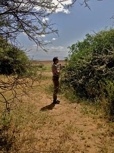 Looking for butterflies at Lake Manyara