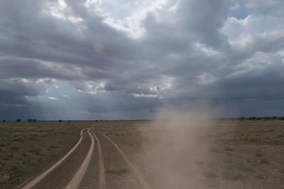 Serengeti, daar waar het land geen einde vindt