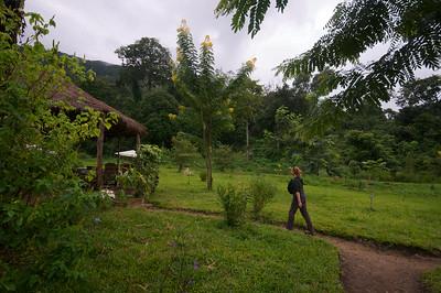 Udzungwa Forest Lodge