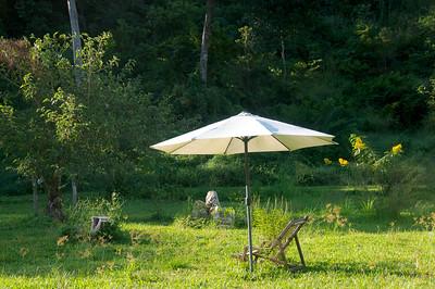Udzungwa Forest Lodge, Garden