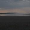 Flamingo at Lake Ndutu