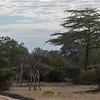 Just entering Selous Game Reserve.... beautiful!