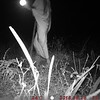 Camera-trap: Night security escorting us to our tent.