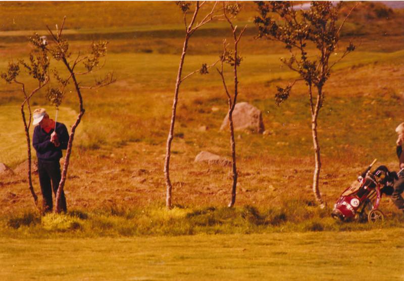 EM unglinga í Grafarholti 1981