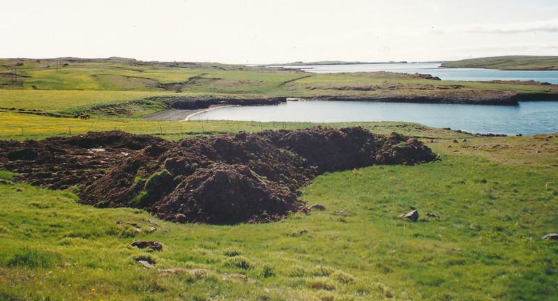 Korpúlfsstaðalandið skoðað