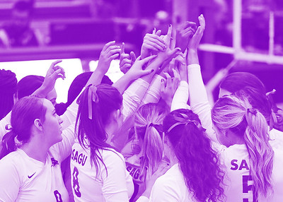 Sagu volleyball Nov 3 and 4 - 2017