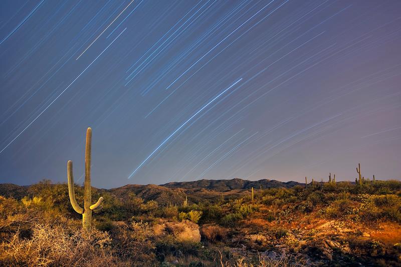 Star trails and Saguaro desert landscape