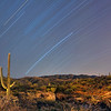 Star trails and Saguaro desert landscape