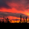Fiery Panoramic Sunset