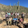 Wilderness Volunteers: 2017 Saguaro National Park Service Trip